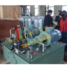 大流量双油泵液压站